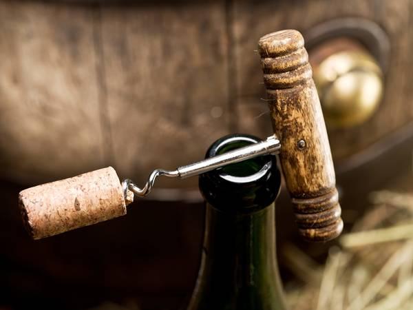 filtre à charbon cave à vin liebherr