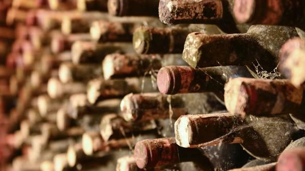 acheter cave a vin vieillissement