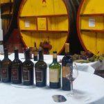 Offres 2020 : Presentoir cuisine vente de vins en ligne - guide - décoratif